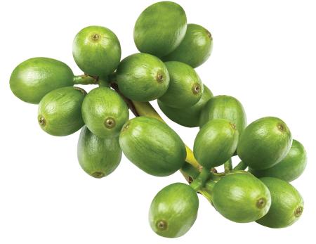 Инструкция к зеленому кофе для похудения