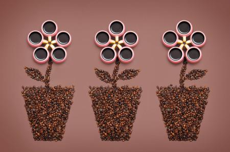 Вещество содержащееся в зернах кофе