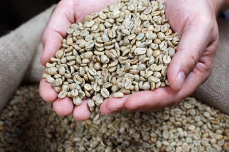 Как измельчить зеленый кофе